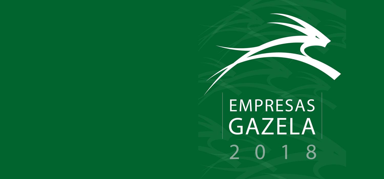 gazelle company